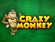 Crazy Monkey - играйте в автоматы бесплатно