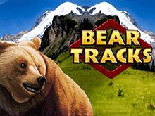 Bear Tracks в Вулкане Удачи