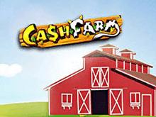 Cash Farm в Вулкане Удачи
