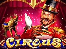Играть на деньги в Circus