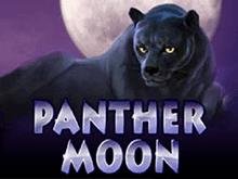 Играть на деньги в Лунная Пантера
