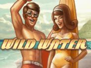 Играть на деньги в виртуальный гаминатор Wild Water
